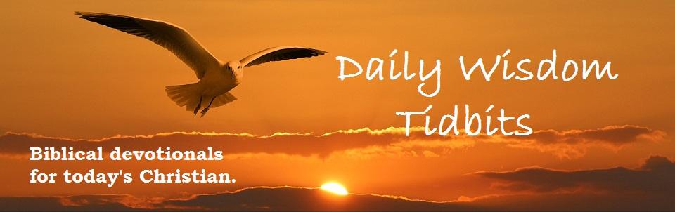 Daily Wisdom Tidbits