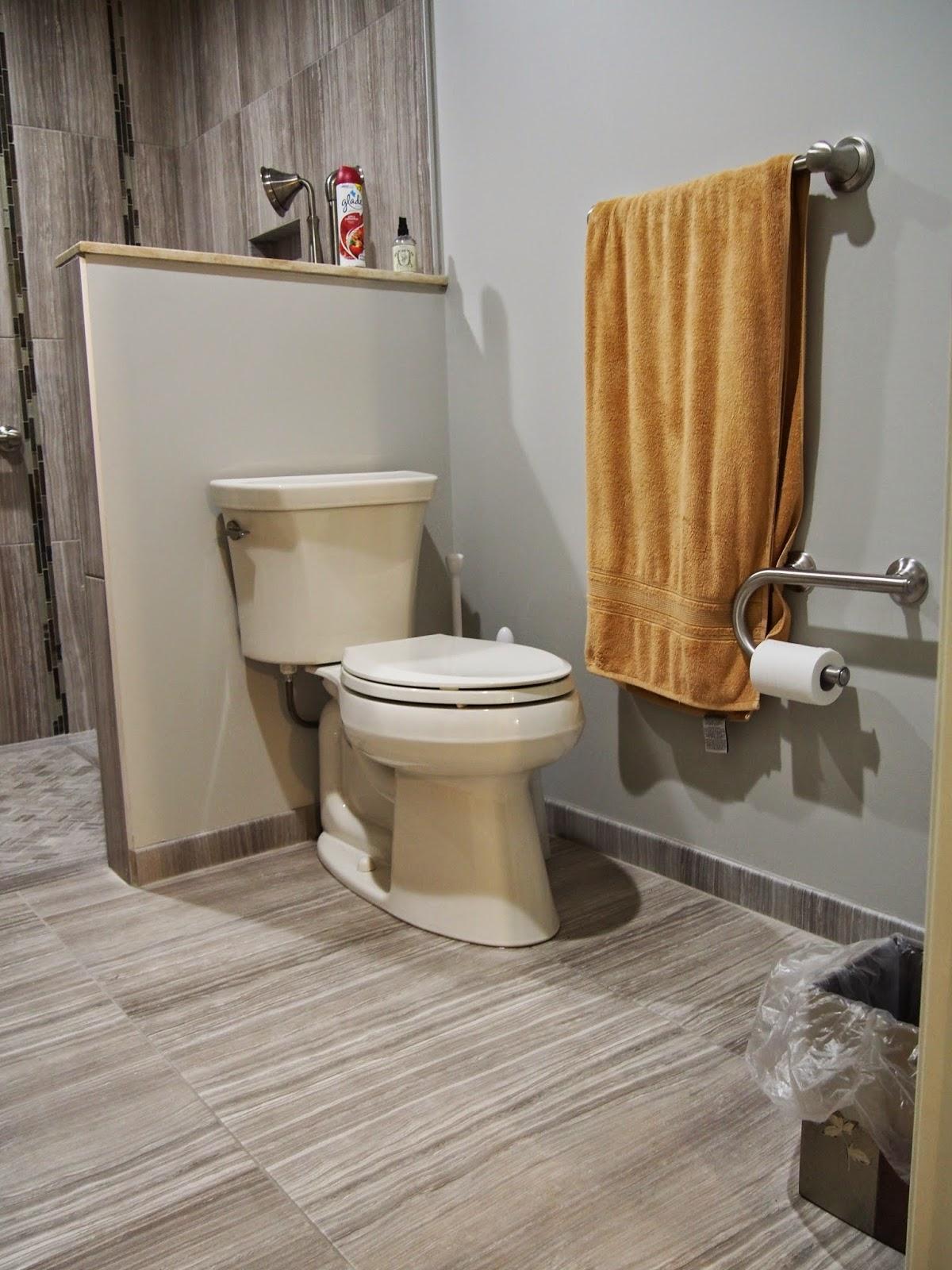 Blogspot toilet domination