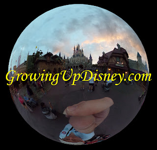 Cinderella Castle Rear Spherical photo