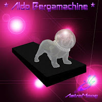 Aldo Bergamachine - AstroMoog (2010)