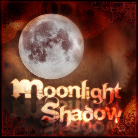 Moonlight Shadow Store