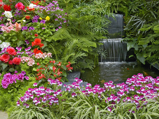 Beautiful ornamental garden plants for Ornamental pond waterfall