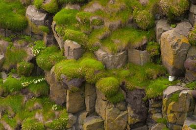 Keindahan Pulau Hebrides Di Skotlandia