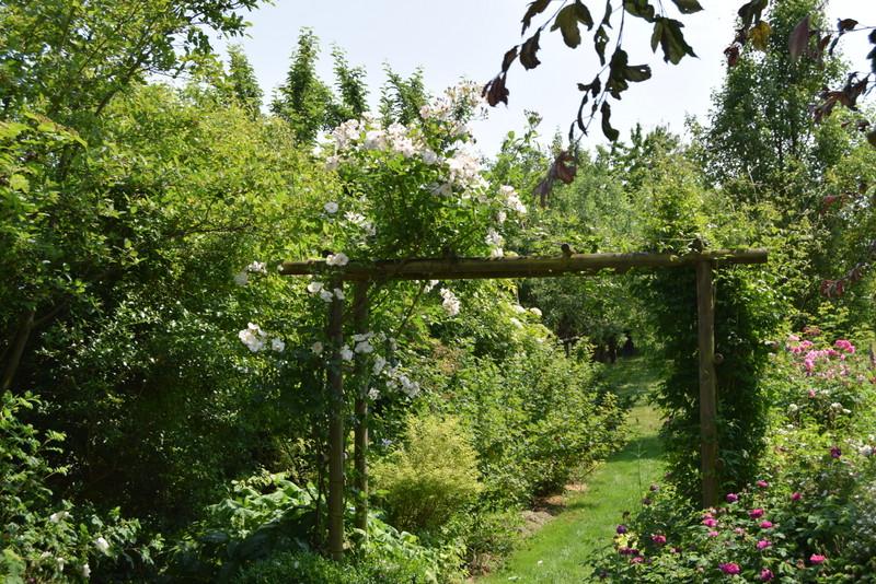 jardin d 39 isabelle rendez vous aux jardins. Black Bedroom Furniture Sets. Home Design Ideas