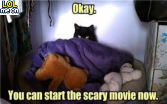 You Can Start The Scary Movie Now - Funny Picture With Caption Funny pictures
