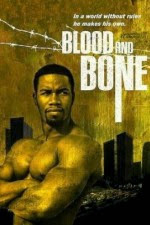 Watch Blood and Bone (2009) Movie Online