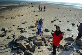 Pantai BNO