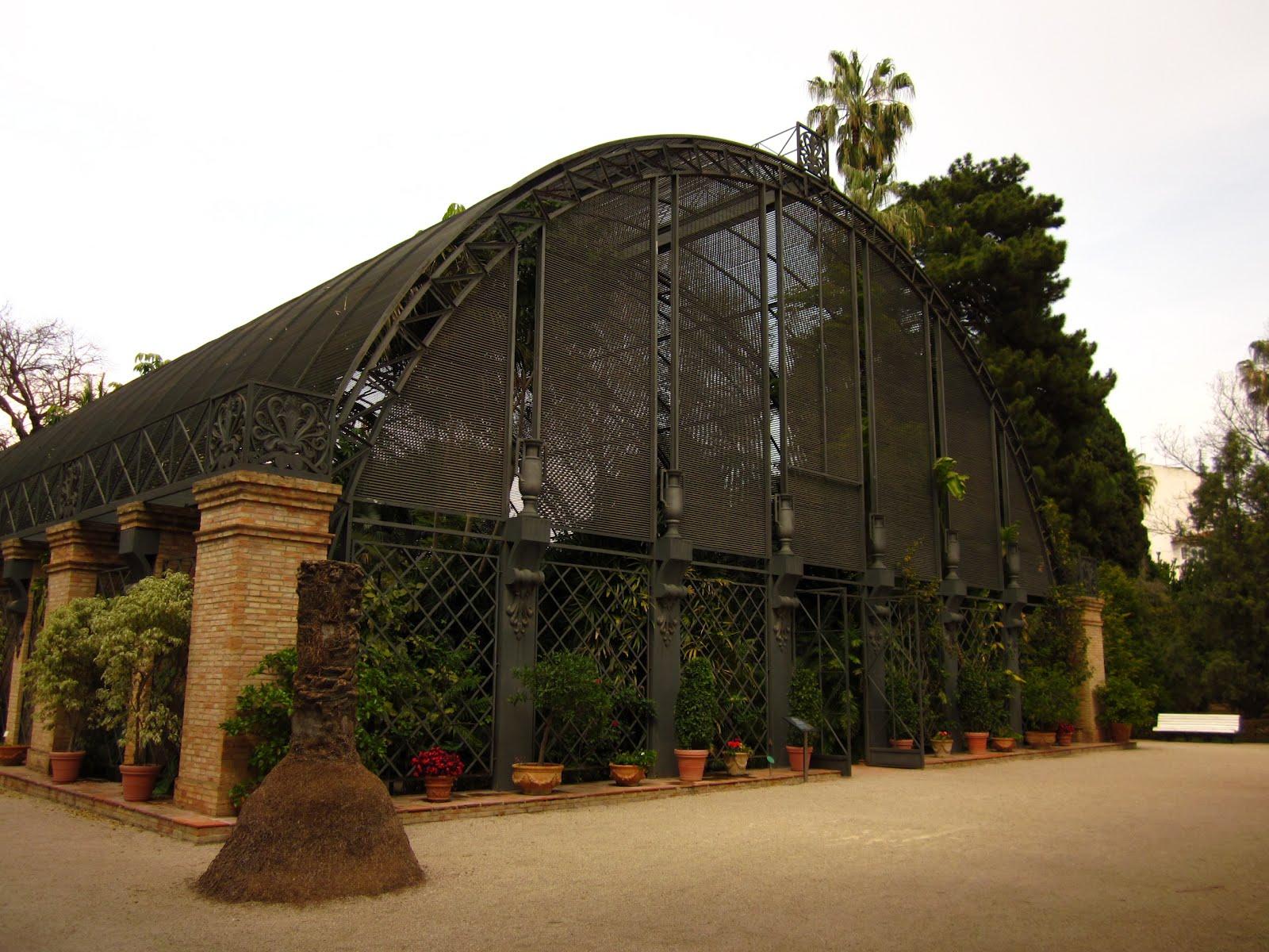 Me he metido en un jard n el jard n bot nico de valencia - Jardin botanico valencia ...
