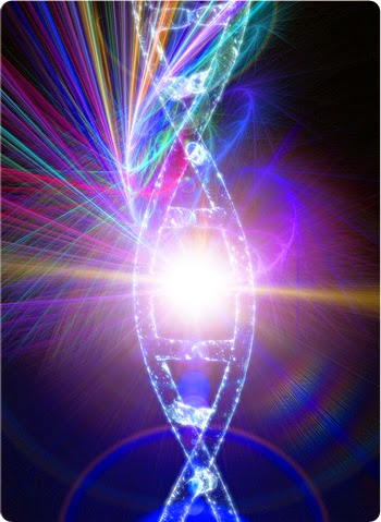 Discovering the Genie in Your Genes: 3 Easy Ways to Harness Epigenetics for a Healthier Life