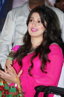Lakshmi Rai Latest Pictures in Pink Saree at Onula Guru Tamil Movie Audio Launch ~ Celebs Next