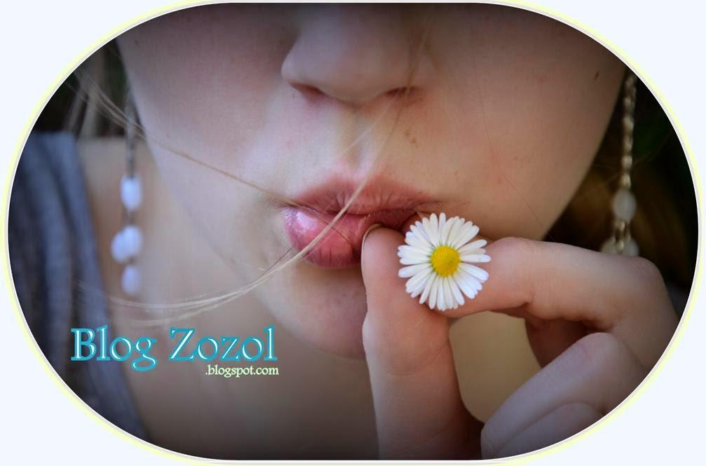 Zozol