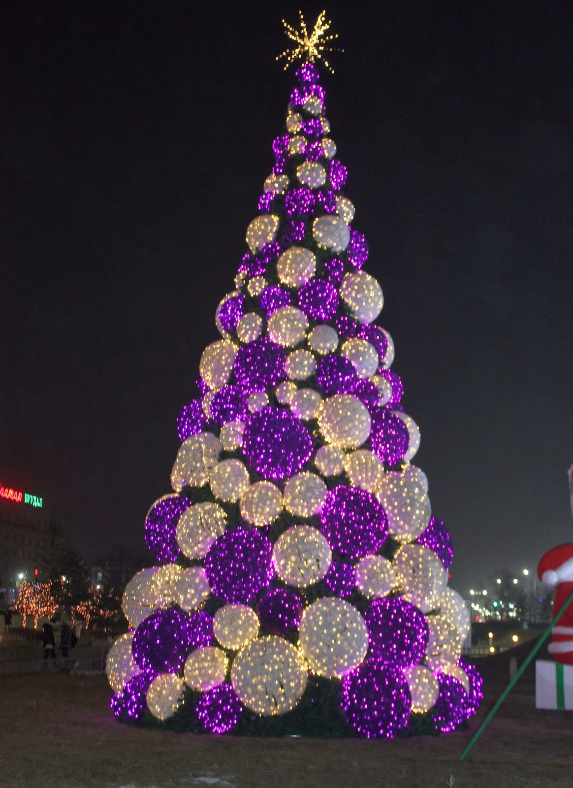 Christmas Tree In Front Of