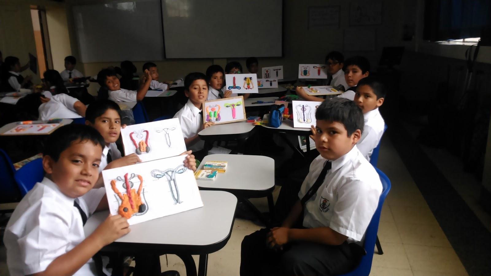 Cuarto de primaria trabajo en aula for Cuarto primaria