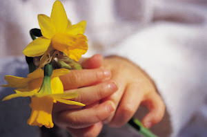 Easter Chocolate and Daffodils