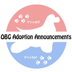 OBG Adoption Announcement Cards