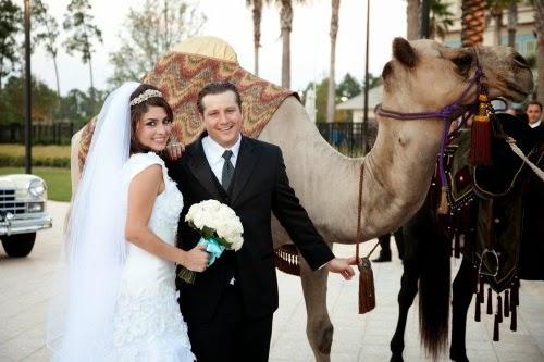 Сватбена Камила