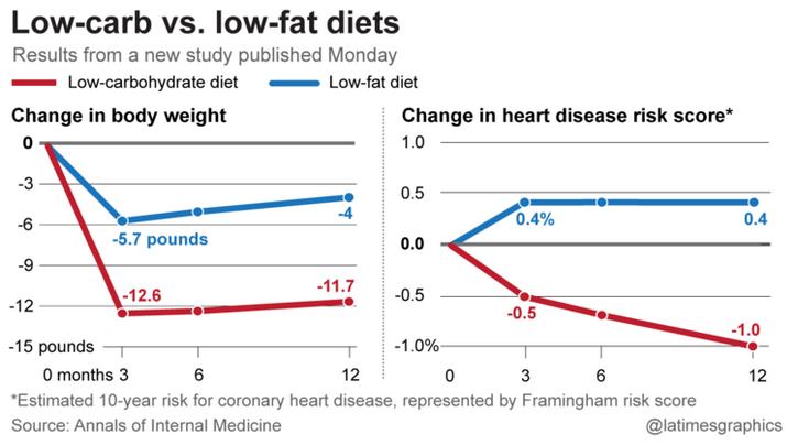 low fat diet vs low carb diet essays