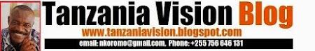 Tanzania Vision Blog