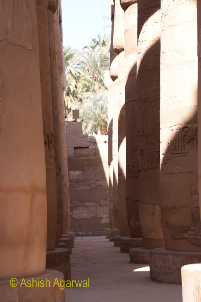The straight lines in which the pillars in the Hypostyle Hall are arranged