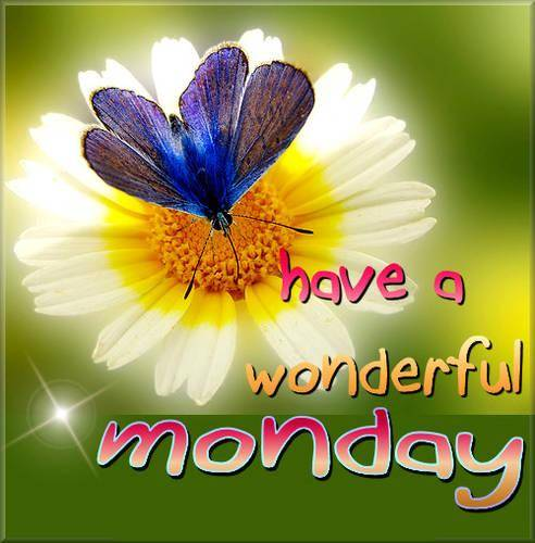 wonderful Monday