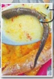 Ekor Cicak Dalam Hidangan Lontong Di Pontian
