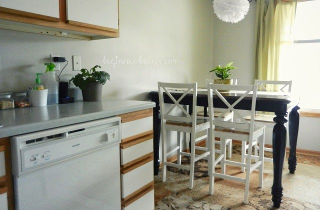air-purifying plants in kitchen and dining area