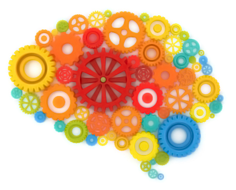 brain and memory quizzes