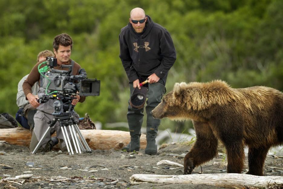 filming Bears