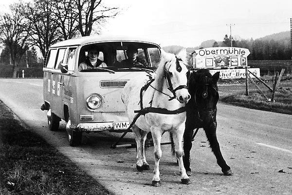 Ketiadaan minyak membuat orang berpikir kreatif dengan memanfaatkan kuda sebagai penarik mobil