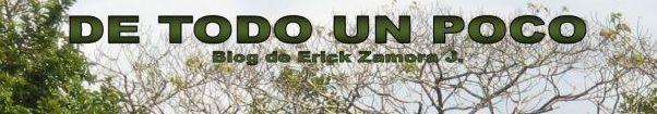 De todo un poco Erick Zamora J