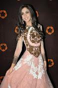 Kanika Kapoor glamorous photos-thumbnail-10