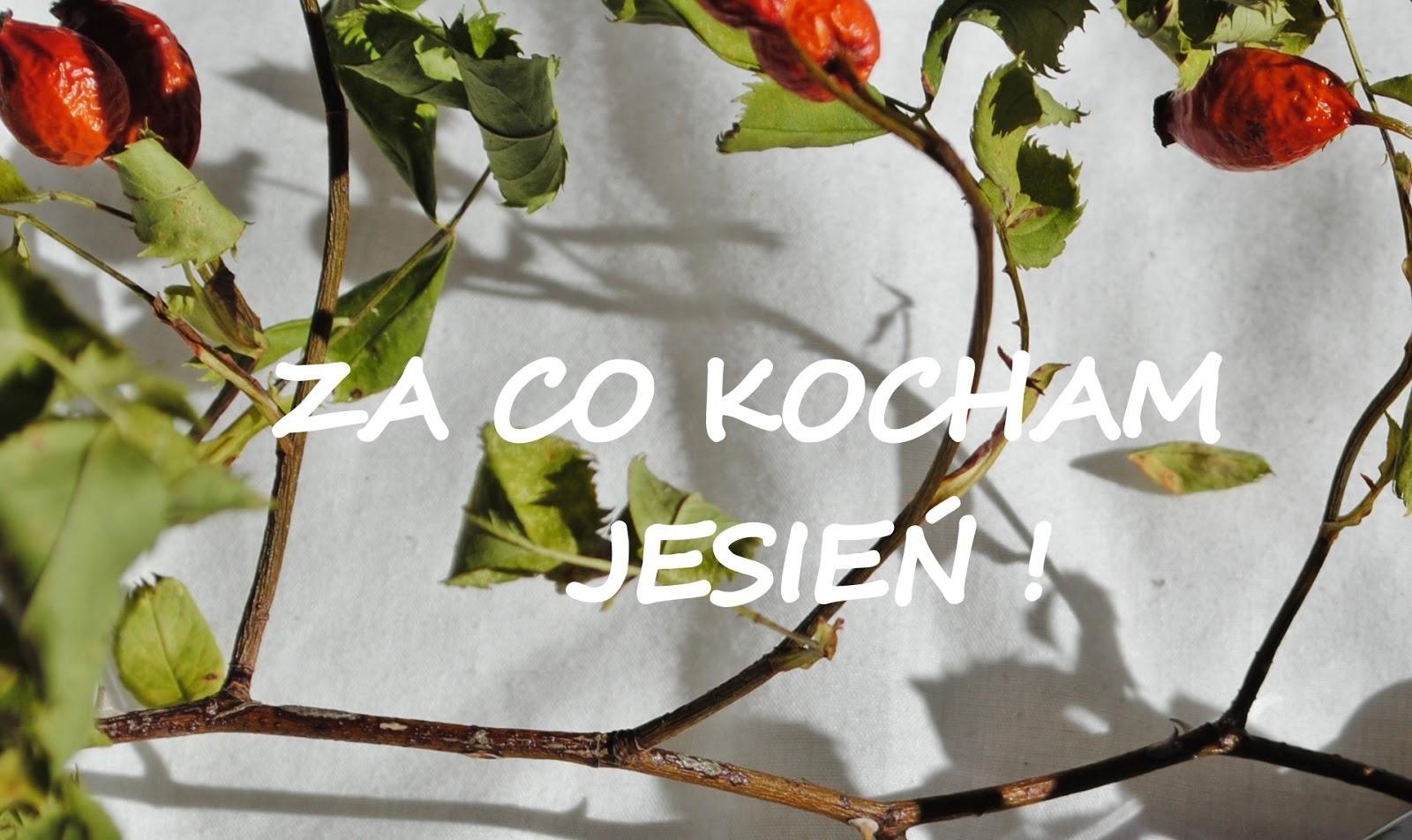 TAG- Kocham Jesień beautypediapatt.blogspot.com