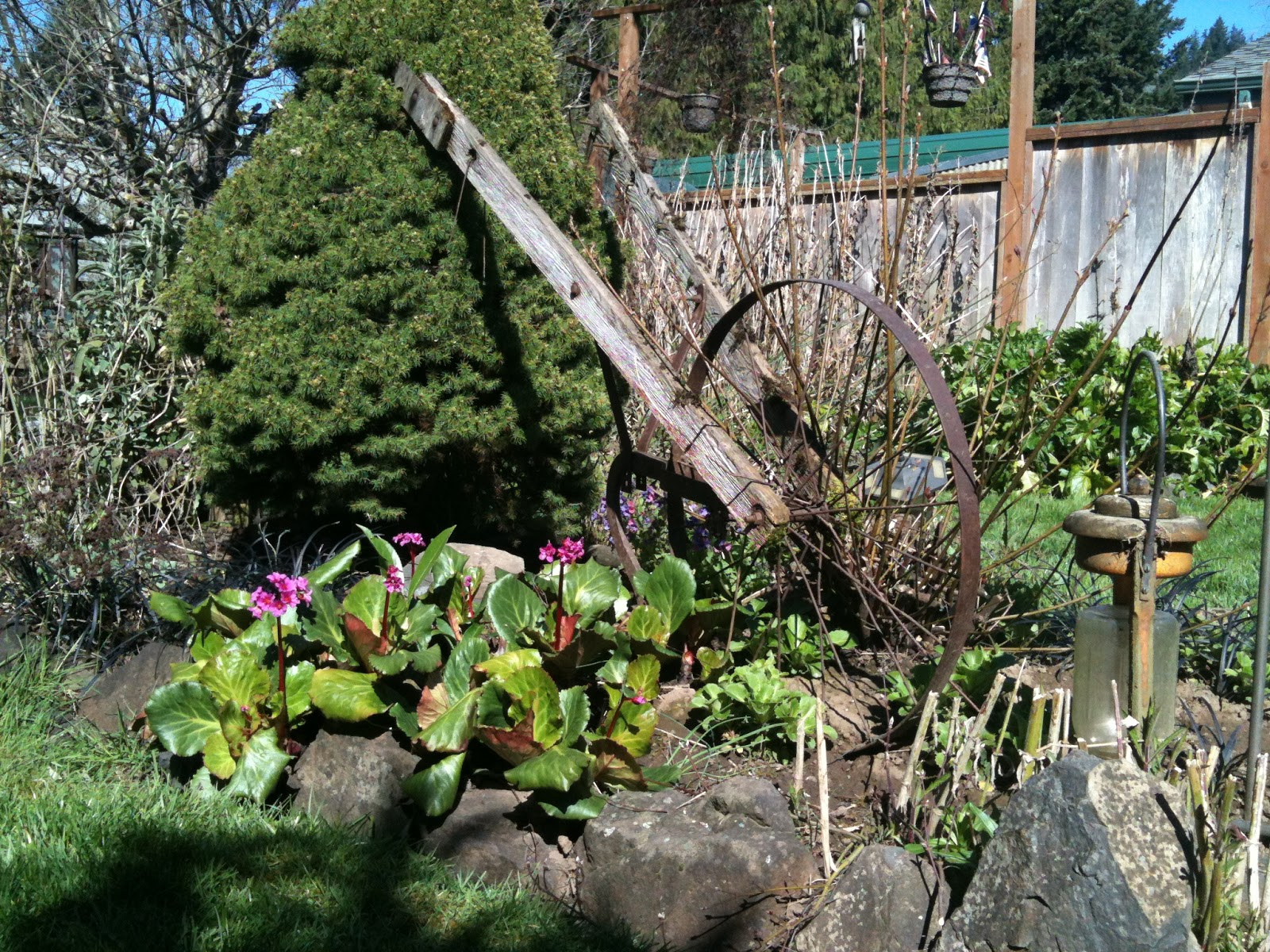 Image Result For Home And Garden Growing Zonesa