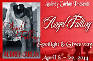 Angel Falling Spotlight & Giveaway