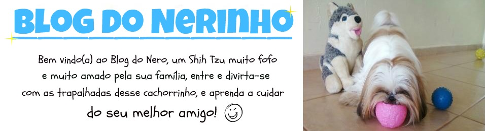 Blog do Nerinho