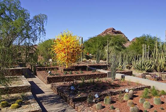 Studio Floral Dora Santoro Desert Botanical Garden