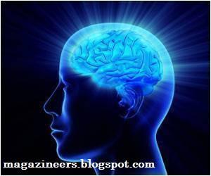 Kebiasaan & Kerusakan Otak