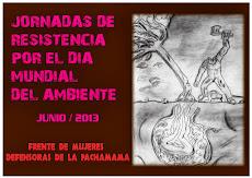 Jornadas de Resistencia por el Día Mundial del Ambiente