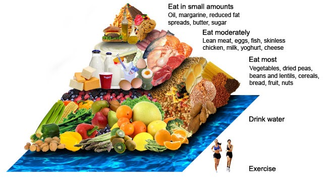 essay about importance of a balanced diet The essay must be research on statement, carbohydrates are an important part of a balanced diet discuss the structure of carbohydrates and their digestion in.