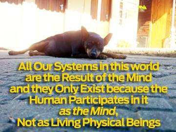 systems only exist participation in the mind