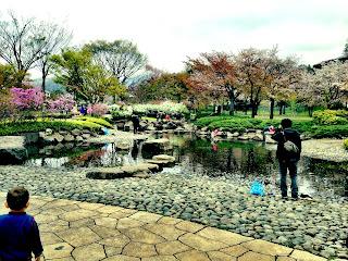 tadpole searching in Ryounan Kouen Park in Japan in spring
