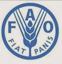 FAO México