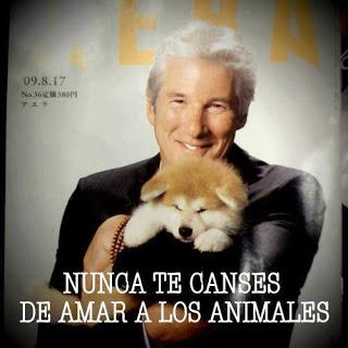 Apoyo al reino animal