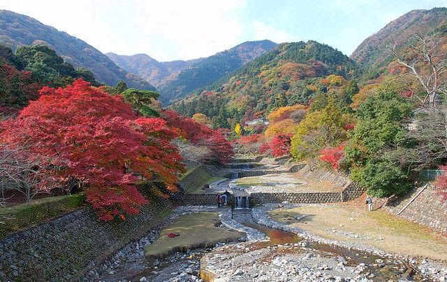Indahnya Musim Gugur di Jepang, japan Autumn Leaves