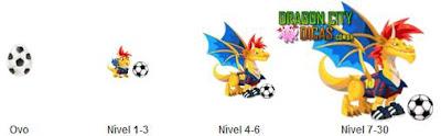 Informações do Dragão Futebol