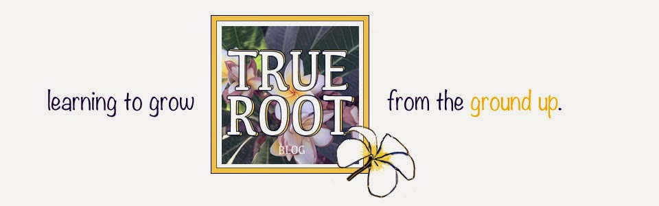 True Root Blog