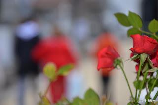 Imagen de un ramo de flores y gente andando por el cementerio