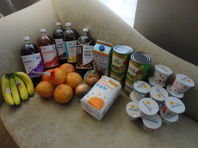 Food Lion Shopping trip - Loudoun County Limbo