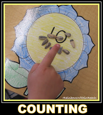 photo of: Spring Math Game using Sunflower seeds for Counting + Numeracy Development