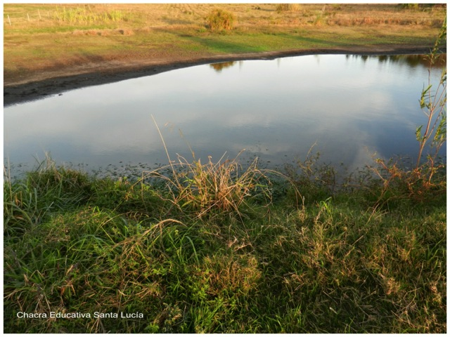 En el tajamar grande el agua disminuye cada día - Chacra Educativa Santa Lucía